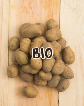 ziemniaki-młode-BIO